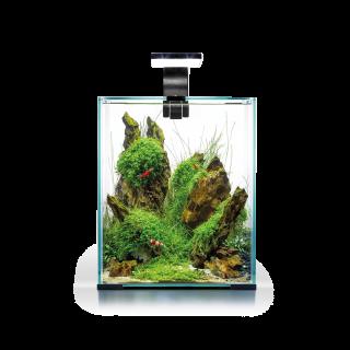 Nano Aquarium - SHRIMP SET DAY&NIGHT 10L - schwarz